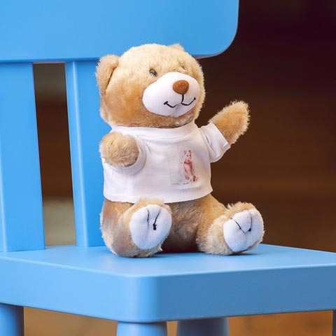 Orsetto Teddy peluches